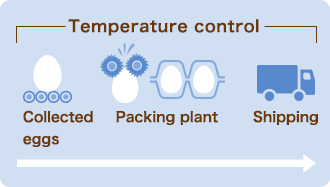 Temperature control (Collected eggs  Packing plant  Shipping)